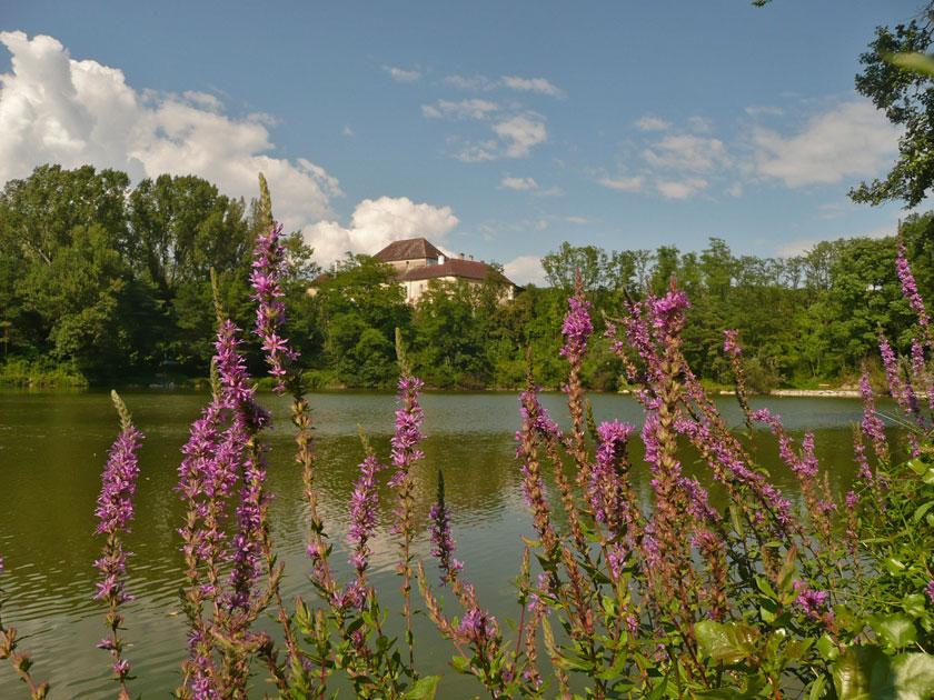 Schloss Albrechtsberg an der Pielach; Credit: Maria Pflug-Hofmayr